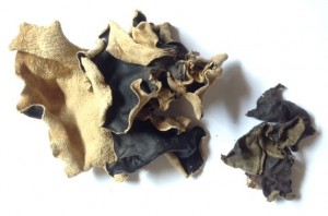 black fungus to clear clogged arteries